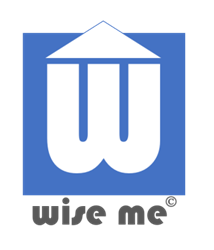 Logo | Wiseme: Entrepreneurship Training and Mentoring by Dimitris Papadimitriou